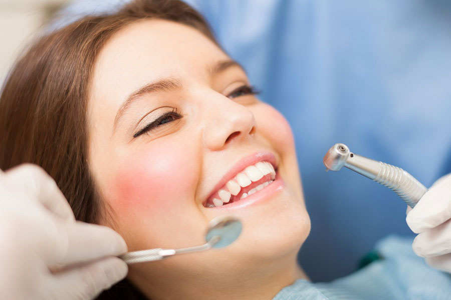 Dentistry / Oral Surgery